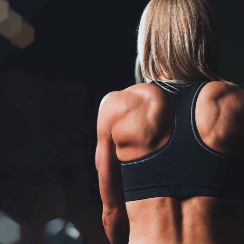 Sapien Rehab and Performance